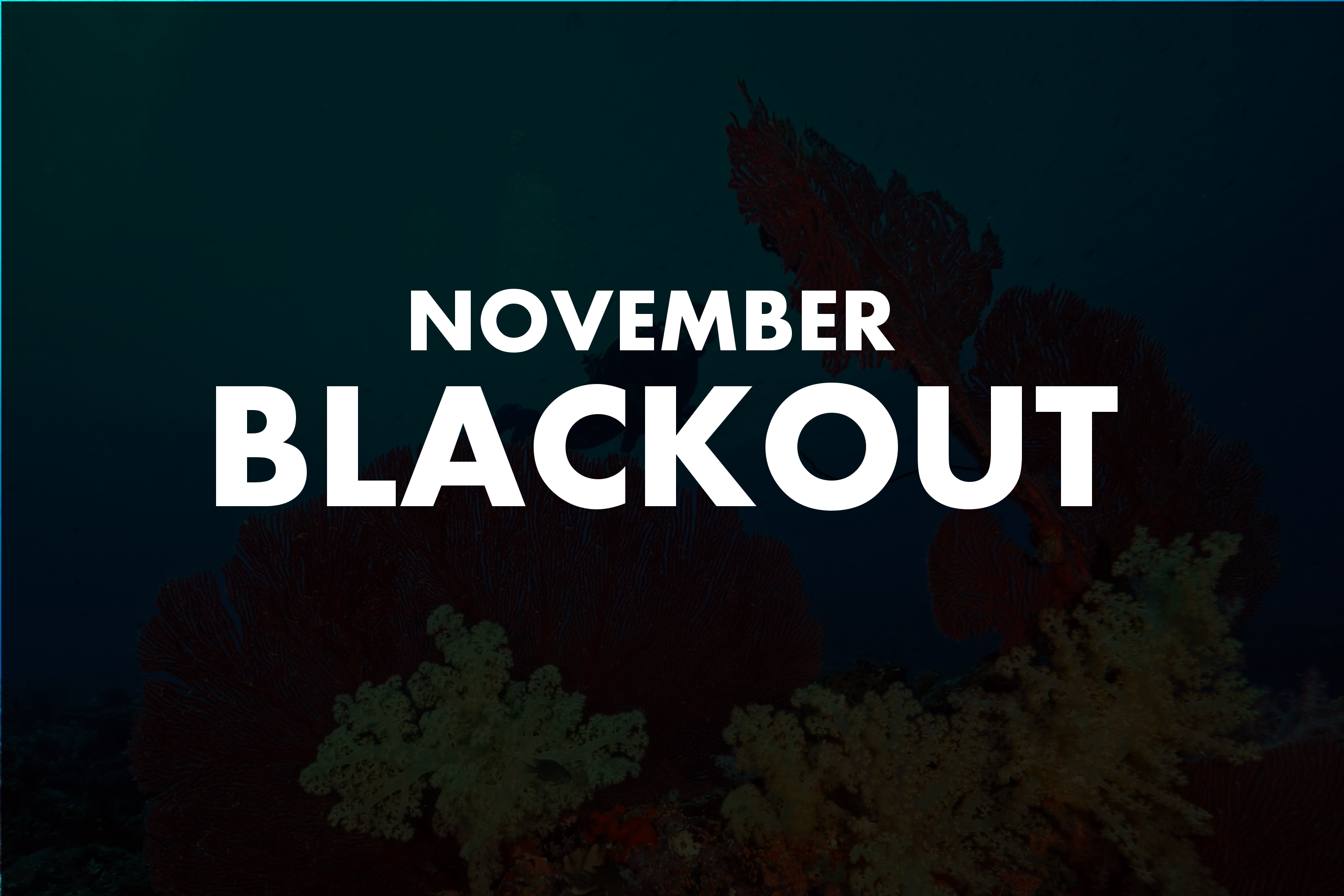 blackoutnovember