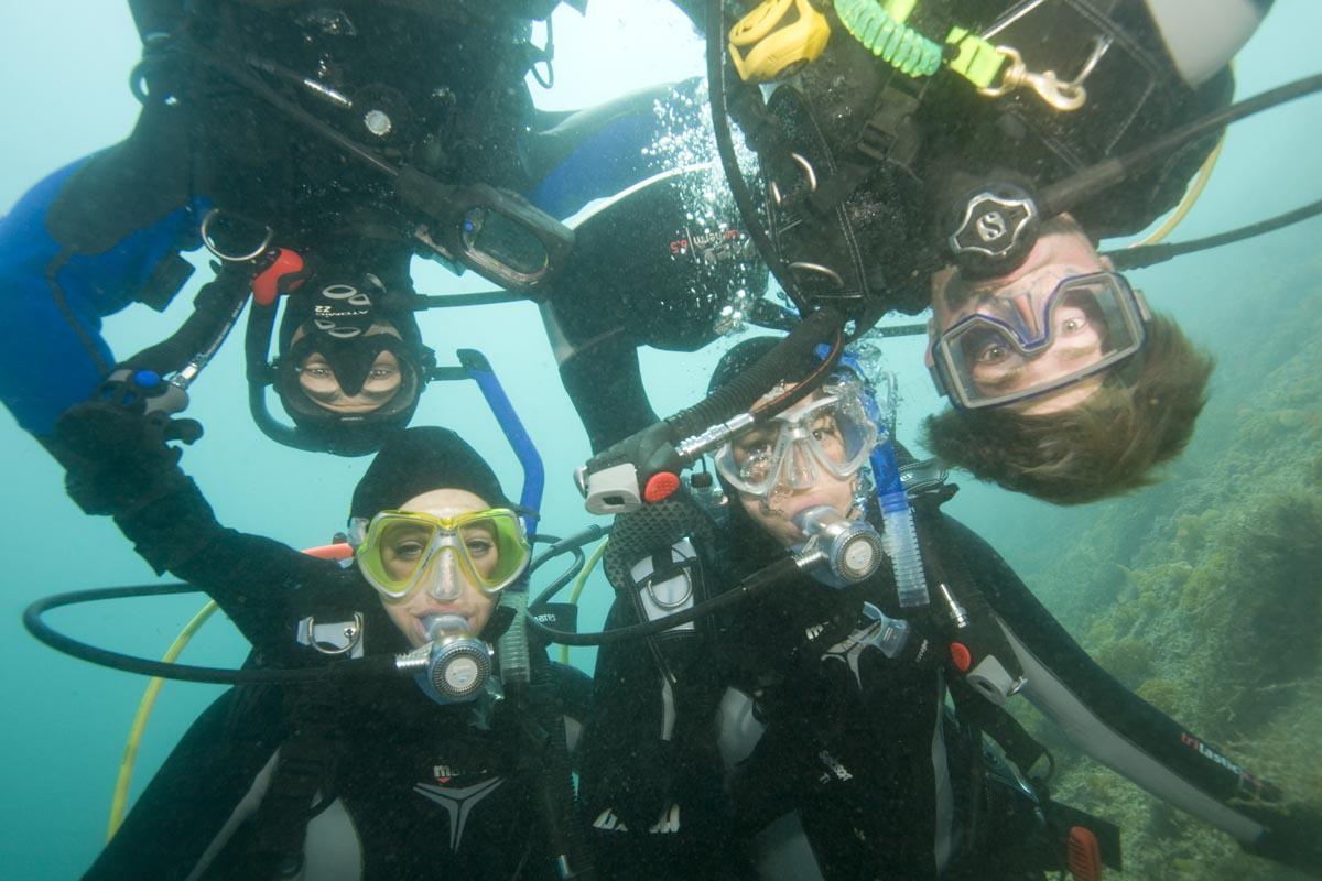 Love Diving!