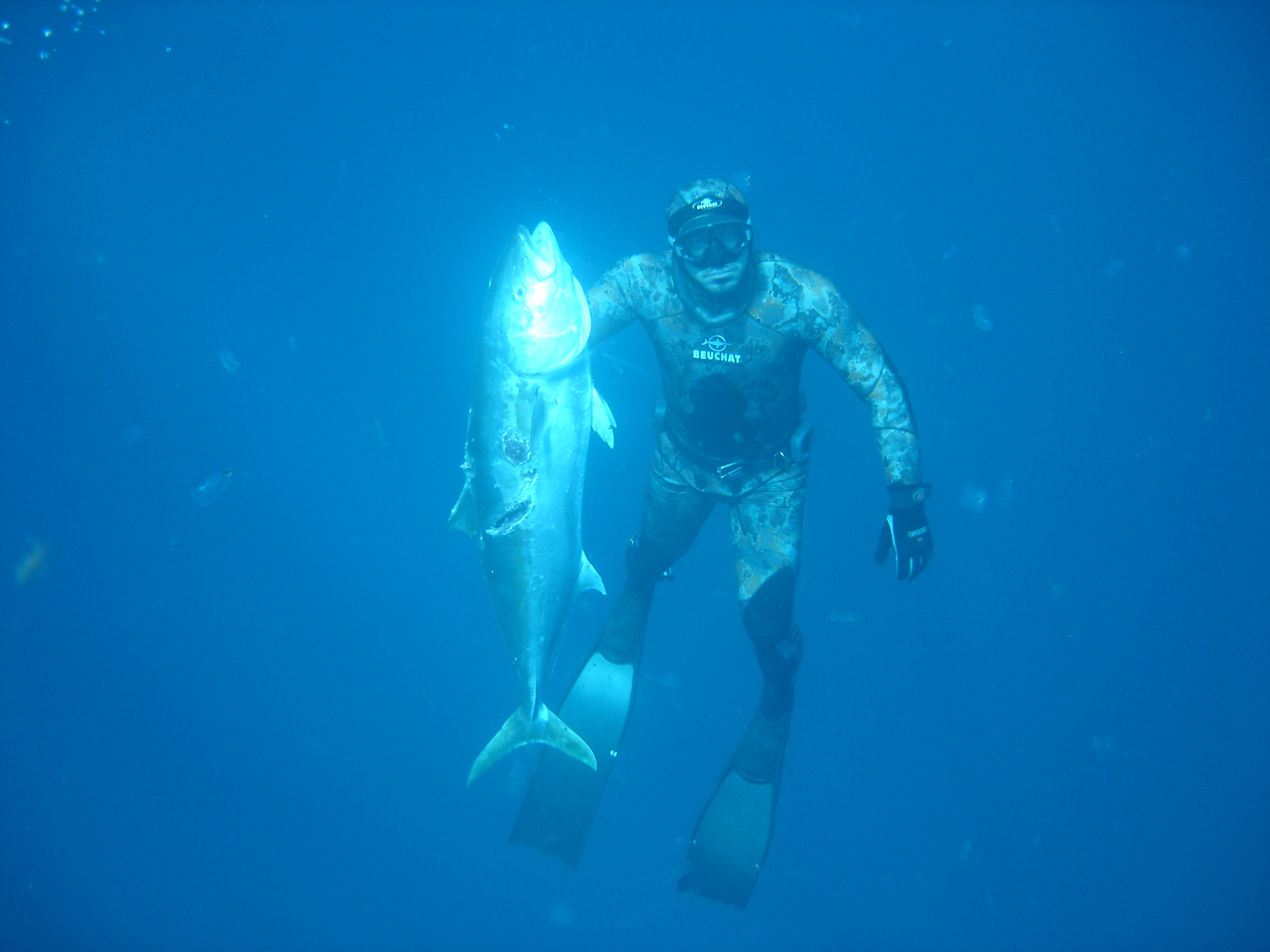Spearfishing has become a popular sport over the last 10 years