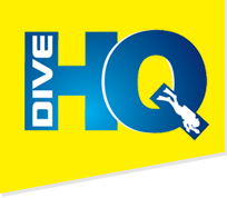 Dive Ski World Logo